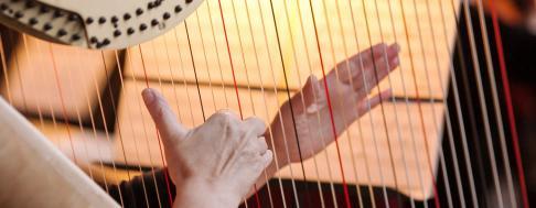 Harfe Keyvisual