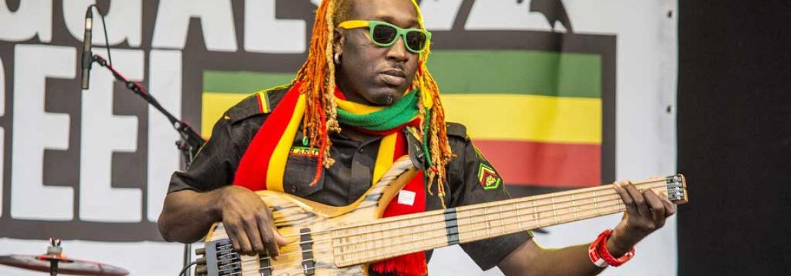 Reggae-Musik Keyvisual